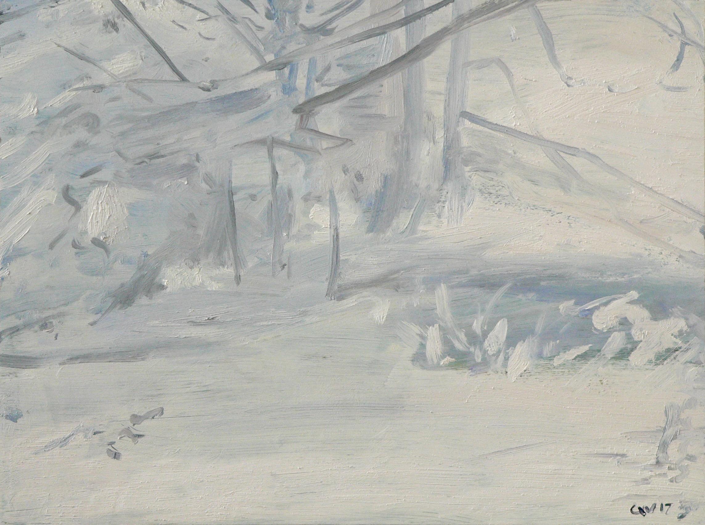 Blizzard #1